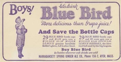 1933 Blue Bird Blotter