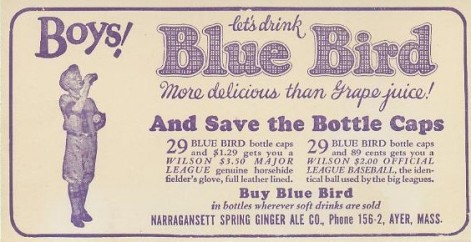 1933 Blue Bird Blotter