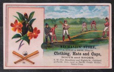 206 Baseball Scene with Flowers Trade Card.jpg