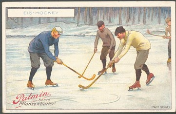 Palmin Moderne Sports Hockey Card