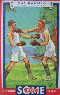 Some Gum Boy Scouts Boxing