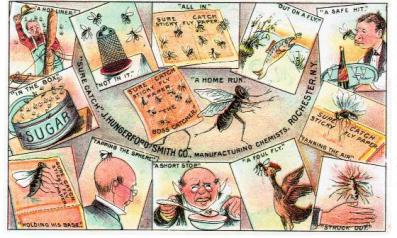 Sure Catch Fly Paper Trade Card.jpg