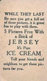 W515 Jersey Ice Cream