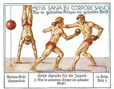 1930 Palmin Youth Sayings Boxing