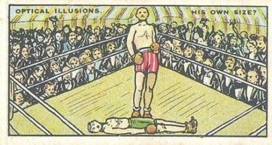 Drapkin Optical Illusion Boxing