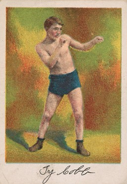 Ty Cobb T225 Boxing