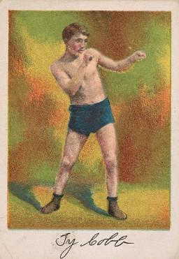Ty Cobb T225 Boxing