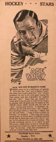 ace bailey stoodleigh