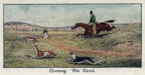 1930 Mitchell Old Sporting Prints Coursing Card