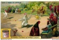 Liebig In the World of Animals Trade Card